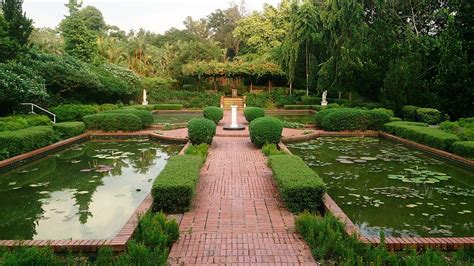 plants in singapore botanic gardens the 10 most beautiful parks and gardens in singapore