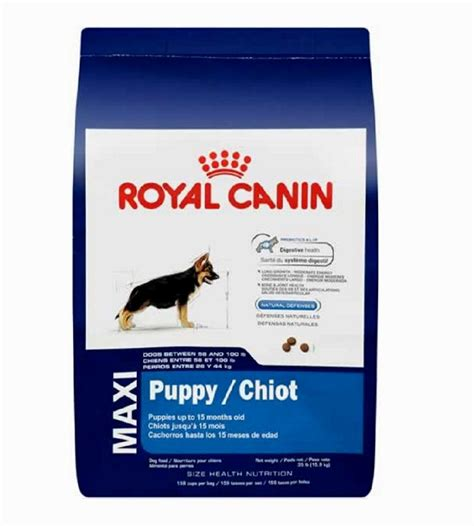royal canin puppy royal canin maxi puppy puppies puppy
