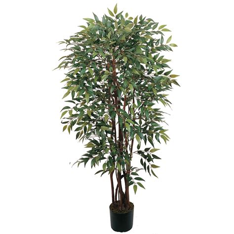 Potted Trees by 4 Foot Smilax Tree Potted 5081