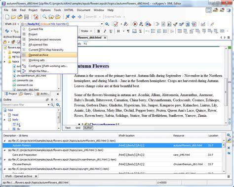 rosetta stone xpath oxygen xml editor key