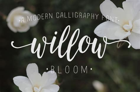 Wedding Font For Photoshop Free by Wedding Fonts 25 Free Psd Ai Vector Eps Format
