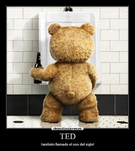 imagenes groseras del oso ted ted desmotivaciones