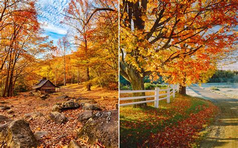 in fall the only map you need to plan a perfect fall foliage trip
