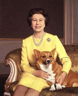 elizabeth s dogs 17 best images about the royal family on
