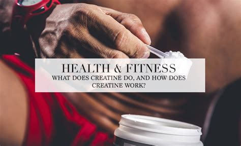 creatine does what what does creatine do and how does creatine work the