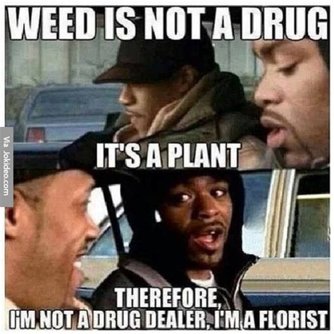 Drug Memes - weed is not a drug meme