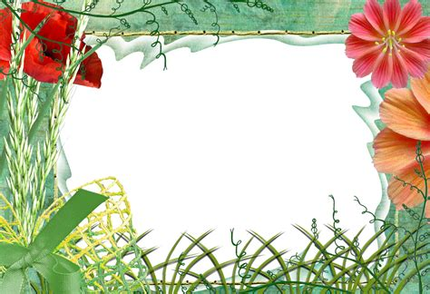 wallpaper flower png photoshop png frames wallpapers designs nature frames