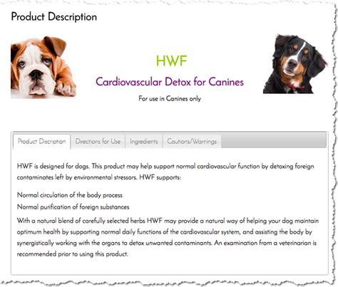heartworm treatment is there a home remedy for heartworms in dogs home review