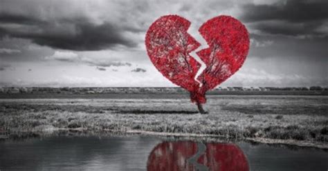 Gembok Cinta Di Farmhouse kontroversi gembok cinta di malang okezone news