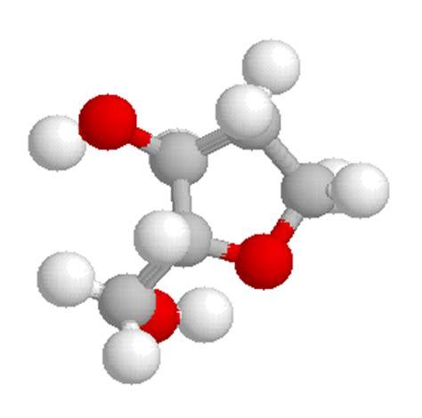 svt les molecules constitutives de ladn