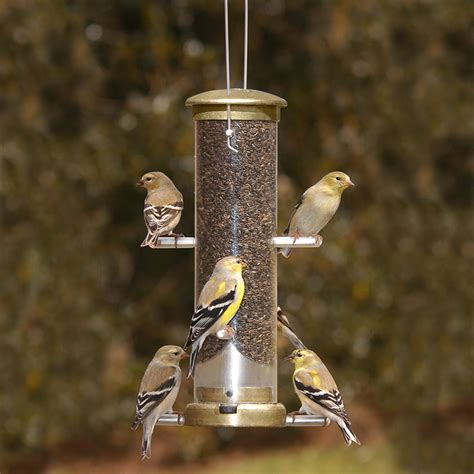 aspects quick clean nyjer feeder as401 nyjer bird