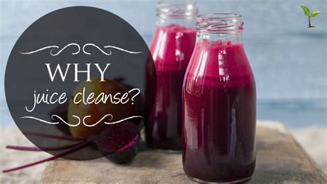 Why Juice Detox by Why Juice Cleanse Hemmis