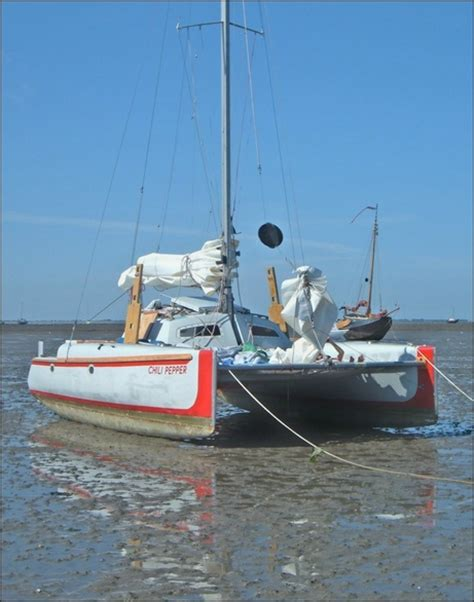 sailing catamaran woods used woods wizard cer cruiser catamaran for sale in
