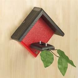 duncraft duncraft hummingbird house