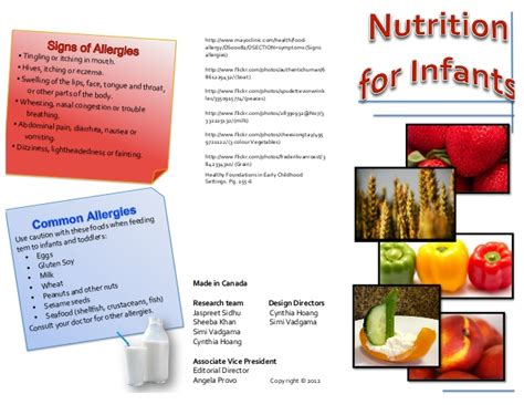 nutrition brochure template nutrition brochure pdf