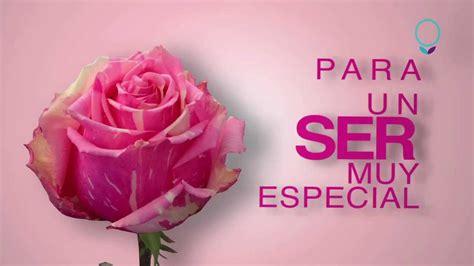 rosas para mama una rosa especial para tu mam 225 youtube