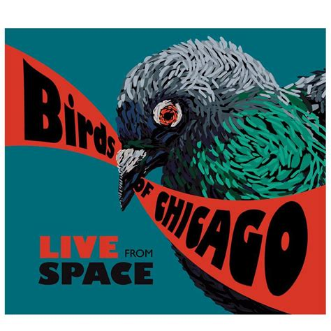 live from space recensie birds of chicago live from space