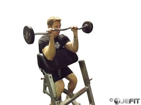 ez bar grip preacher curl exercise database