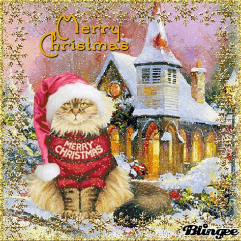 merry christmas cat picture  blingeecom