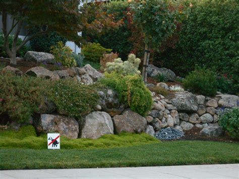 landscaping ideas san francisco bay area plants