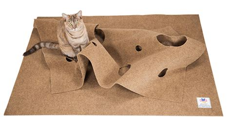 Winners Mat by Enter To Win A Ripple Rug Cat Activity Mat Two Winners