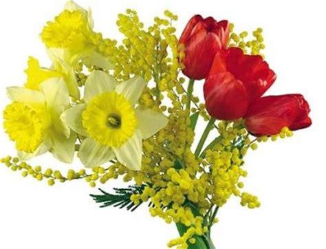 festa della donna fiore forum le perle cuore buon 8 marzo a tutte le donne