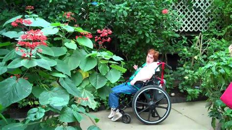 indoor butterfly garden uk magic wings in deerfield ma an indoor year