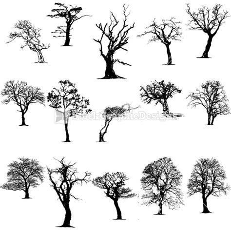 Tree Silhouettes Vector Clip Art   StockGraphicDesigns
