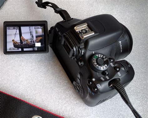 canon dslr flip screen cameras with flip out screens canon nikon digital
