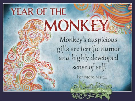 new year monkey qualities image gallery monkey zodiac characteristics