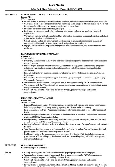 data analyst job description resume resource page
