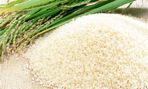 Pedati Beras Premium Merah 5kg info daftar harga beras terbaru