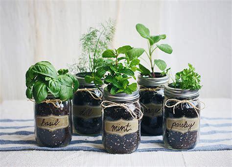 smart herb garden diy mason jar fresh herb garden