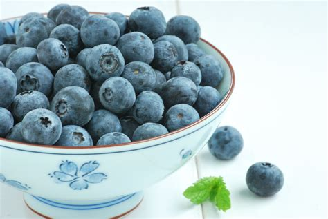 Berry Me Blue blueberry relishing it