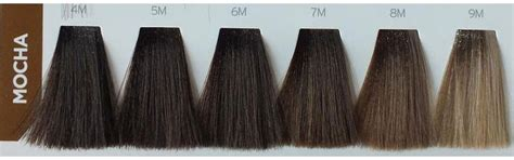 Matrix Socolour Chocolate mocha hair color chart highlights ideas with pictures