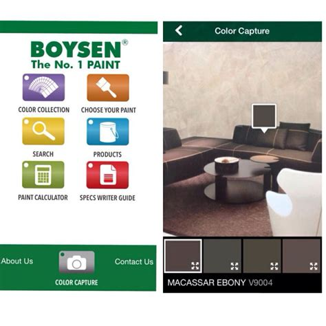 you tried the color capture feature of the boysen app the app today and see how