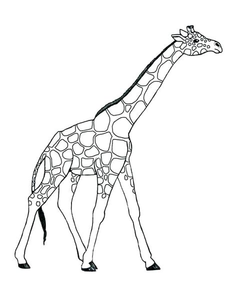 giraffes can t dance coloring pages famous giraffes cant dance coloring pages photo resume