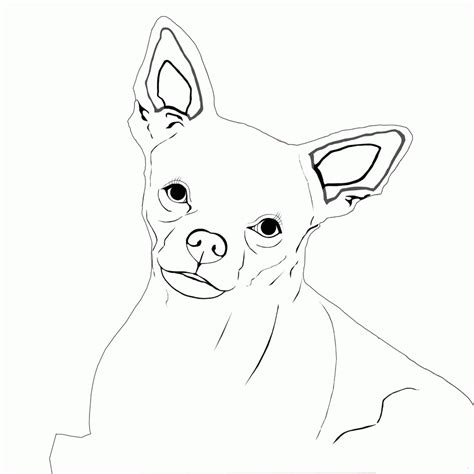 chihuahua coloring pages for kids az coloring pages chihuahua coloring page az coloring pages