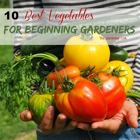 The Best Vegetables For Beginning Gardeners The Beginning Vegetable Gardening