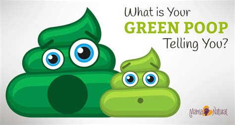 What Do Green Stools by What Is Your Green Telling You About Your Health
