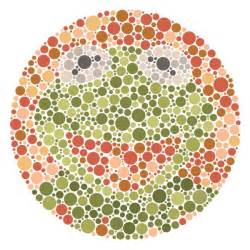 being color blind it s not that easy being seen products kermit and green