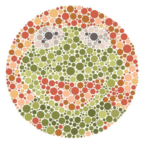 are all animals color blind it s not that easy being seen products kermit and green