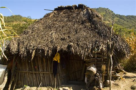Thatched Hut Photo