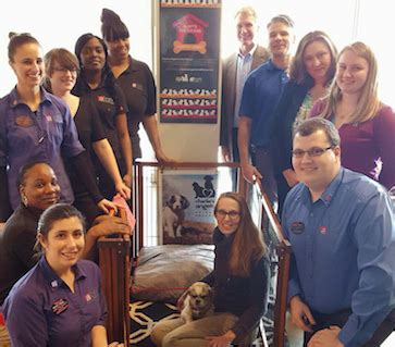 friendly hotels asheville aloft asheville chosen as top pet friendly hotel in u s