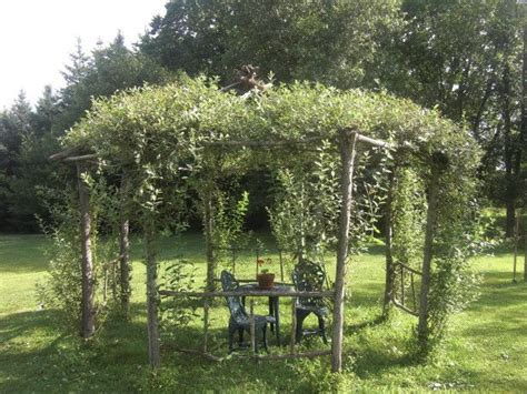 willow gazebo 113 best images about willow on pinterest gardens