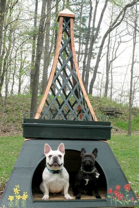 unique dog house designs home design garden