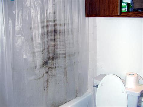 cleaning mould off curtains shower curtain liners and your health clean popo