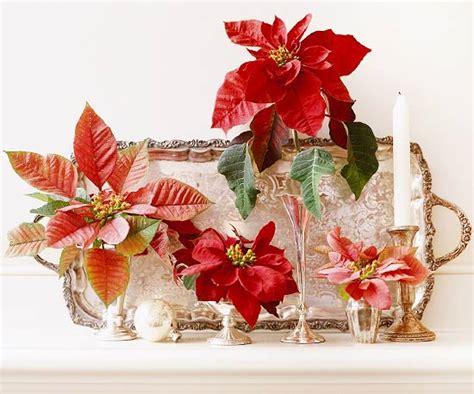 arreglos florales navide241os arreglos navide 241 os con flor de pascua
