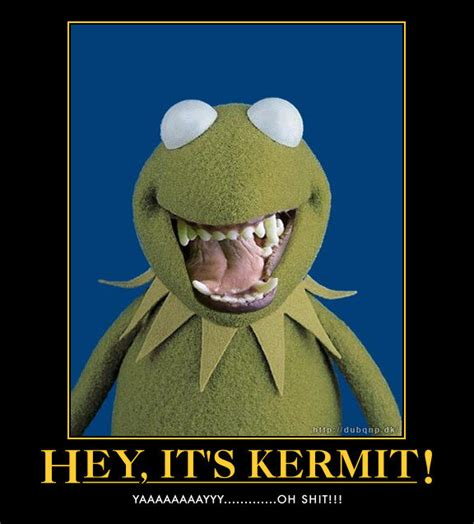 Kermit Meme My Face When - best photos of kermit face meme my face when kermit the