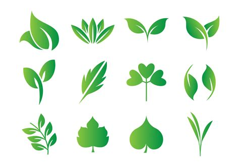 vector free free leaf hojas vector free vector stock